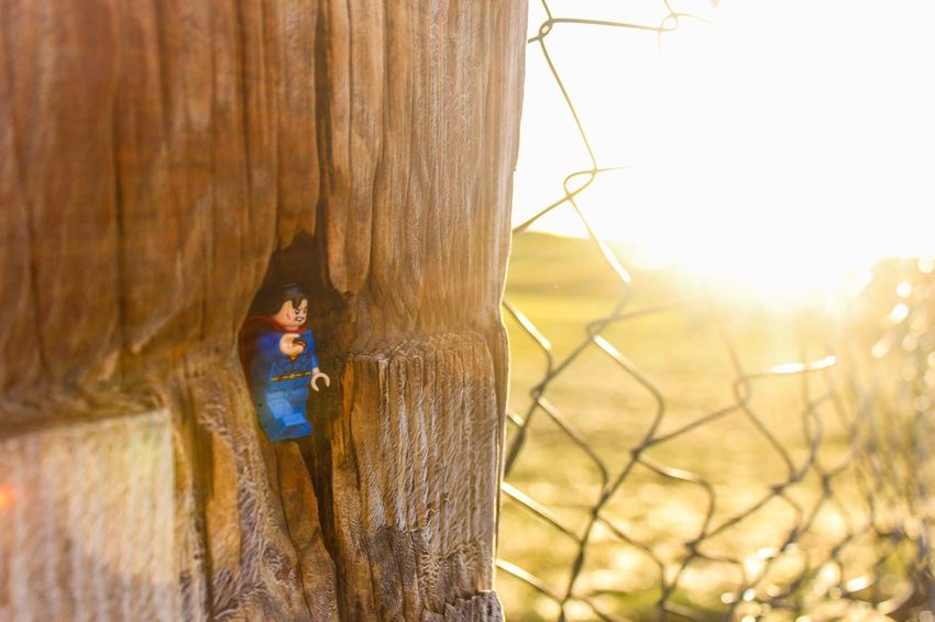 You're the light, you're the night You're the color of my blood🎵 Lego Minifigures LEGO Legophotography Superman Sun Rays Wire Fence Taking Photos Eye4photography  EyeEm Gallery The Purist (no Edit, No Filter) Photography Photography Is My Escape From Reality!