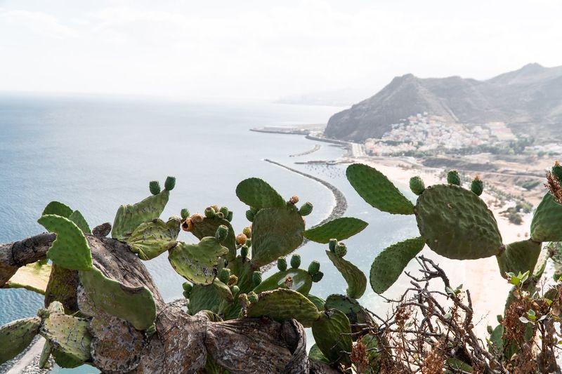 Photo taken in San Andrés, Spain