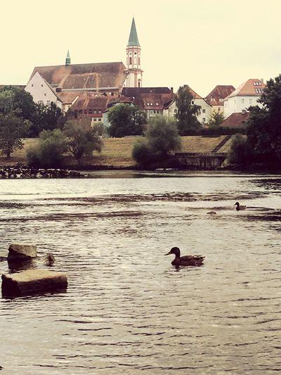 Donau Straubing