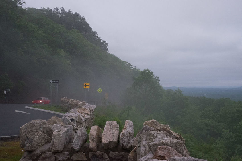 Foggy Lookout Beauty In Nature Car Climbing Day Drink Dusk Dusk In The City Everyday Joy Fog Green Color Landscape Mountain Nature No People Outdoors Road Sign Scenics Simplicity Sky Softness Tranquility Transportation Tree Upside Down VW Beetle