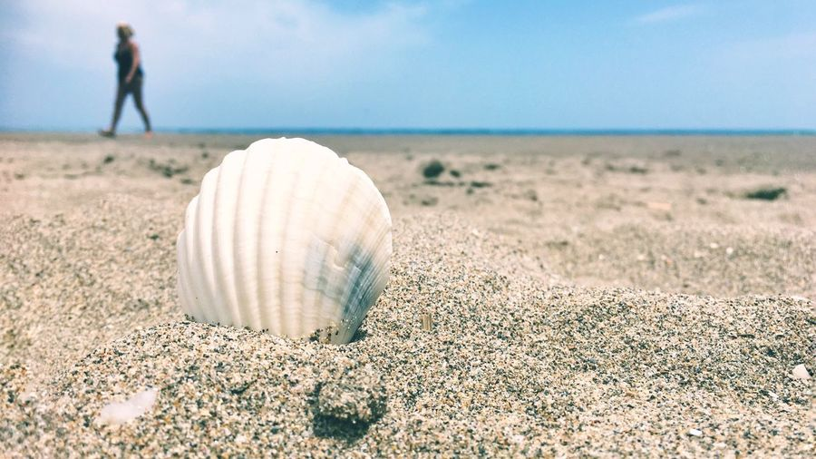 Nature Day Sky Outdoors Beach Landscape Real People Scenics One Person Water Beauty In Nature Sea Grass People Breathing Space Eyeem Everywhere EyeEmNewHere Summertime Summer Seashell Tranquility Peaceful