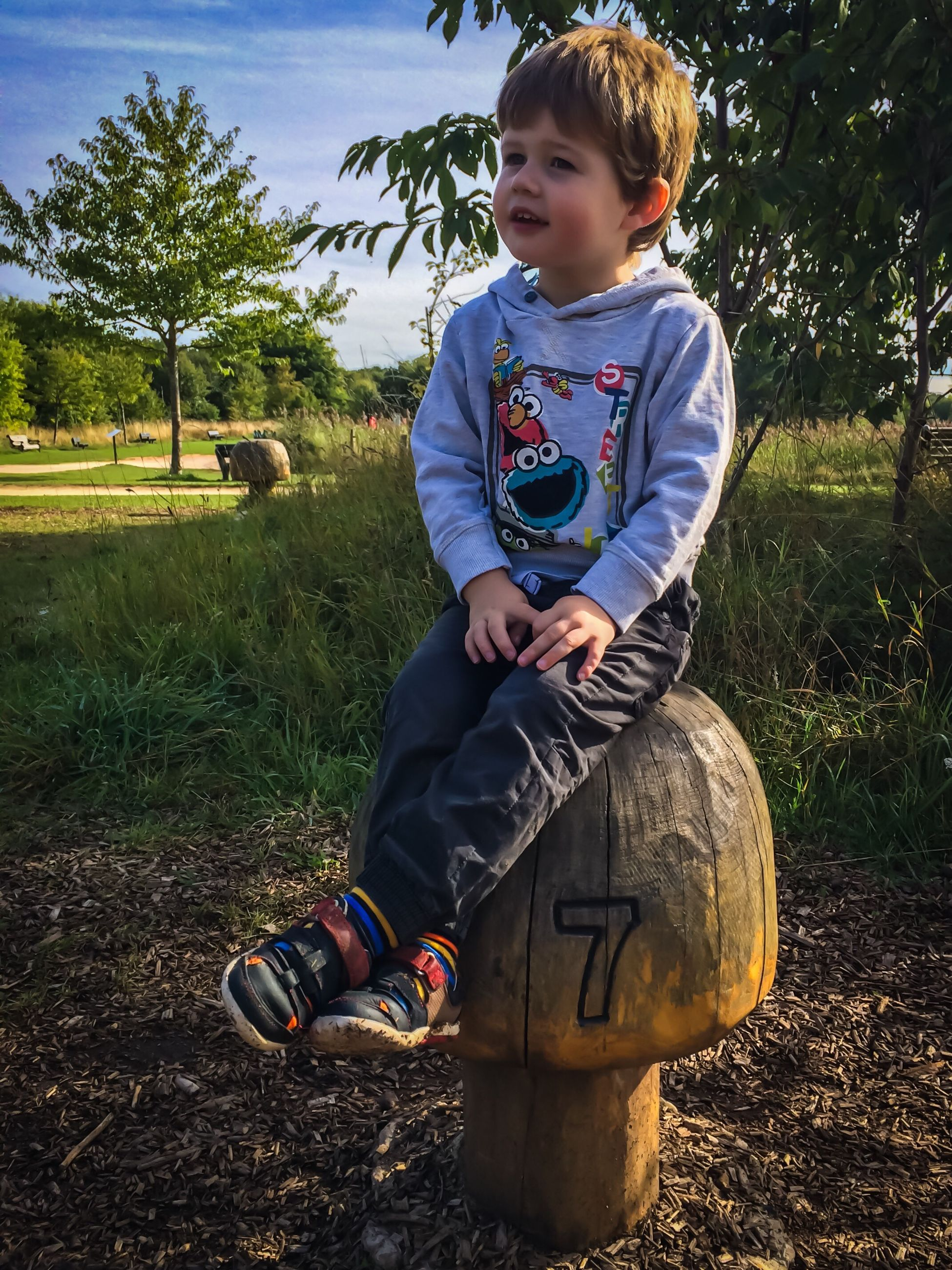 full length, childhood, casual clothing, leisure activity, person, elementary age, lifestyles, park - man made space, field, innocence, togetherness, day, outdoors, toddler, green color, footpath, focus on foreground