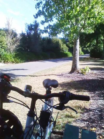 The Great Outdoors With Adobe Newzealandscenary Summer ☀ Newzealandbeauty Hanging Out Lonely Wanderer Enjoying Life Bikeride Great Outdoors