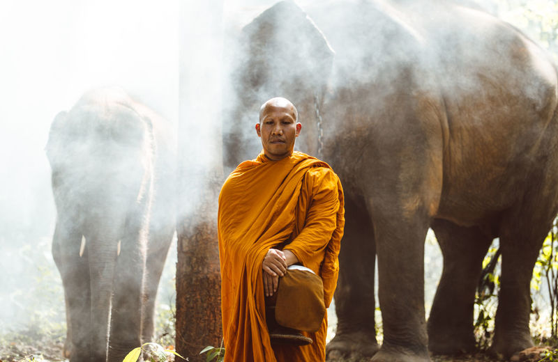 Portrait of monk standing against elephant in forest