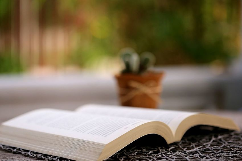 Book Open Table Publication Wood - Material Education Paper Absence Day Page Literature Selective Focus Still Life Copy Space Backgrounds Background Decoration Holiday Seaon Weather Reading Read Reading A Book Learning Leisure Activity