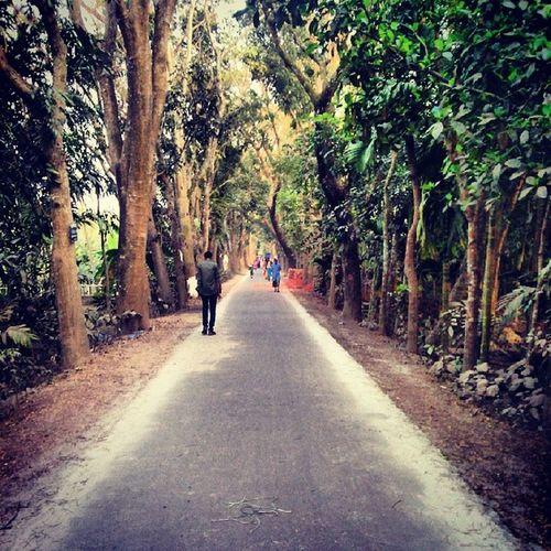 Road Mehendigonj Barisal Bangladesh ...