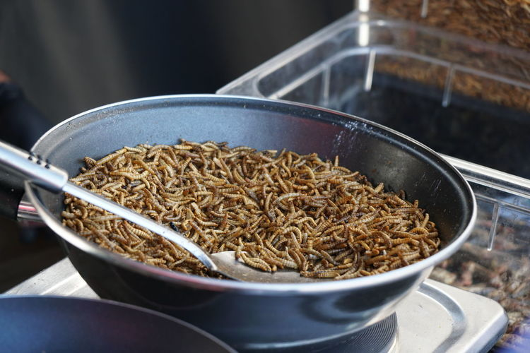 insects as food: fried mealworms Bizarre Frying Frying Pan Snack Asian Food Food Food And Drink Fried Healthy Eating Insects  Mealworms No People Preparing Food Protein Street Food Worms