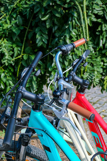Close-up of bicycle parked by plants