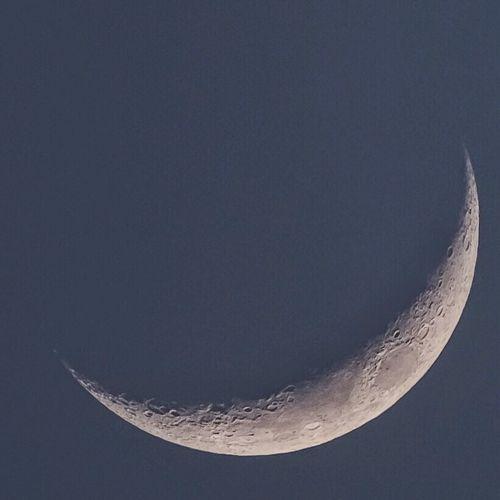 Moon 🌙 Light