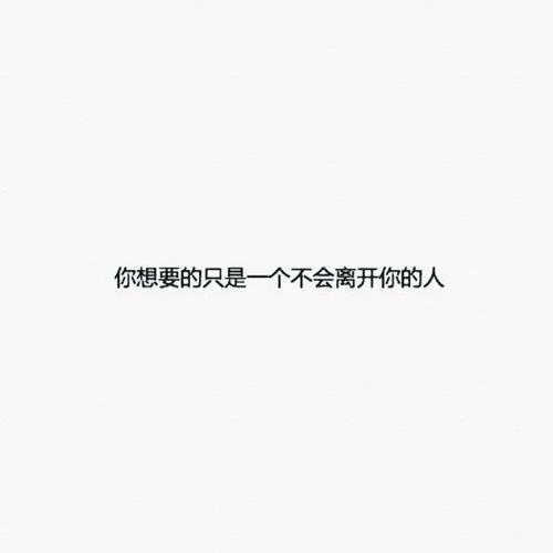 Taking Photos 晚安