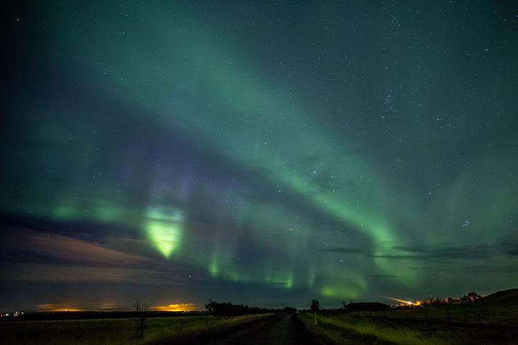 Borealis Aurora