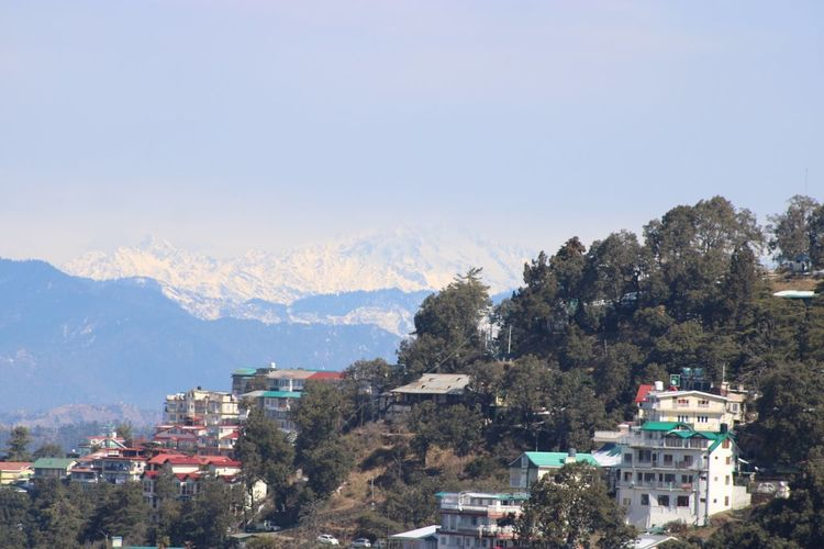 Snow covered Himalayas in background Building Exterior Architecture Tree Built Structure Plant City Building