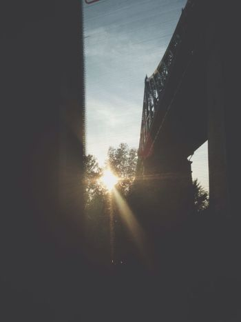 beaming sun rays ☀️ First Eyeem Photo