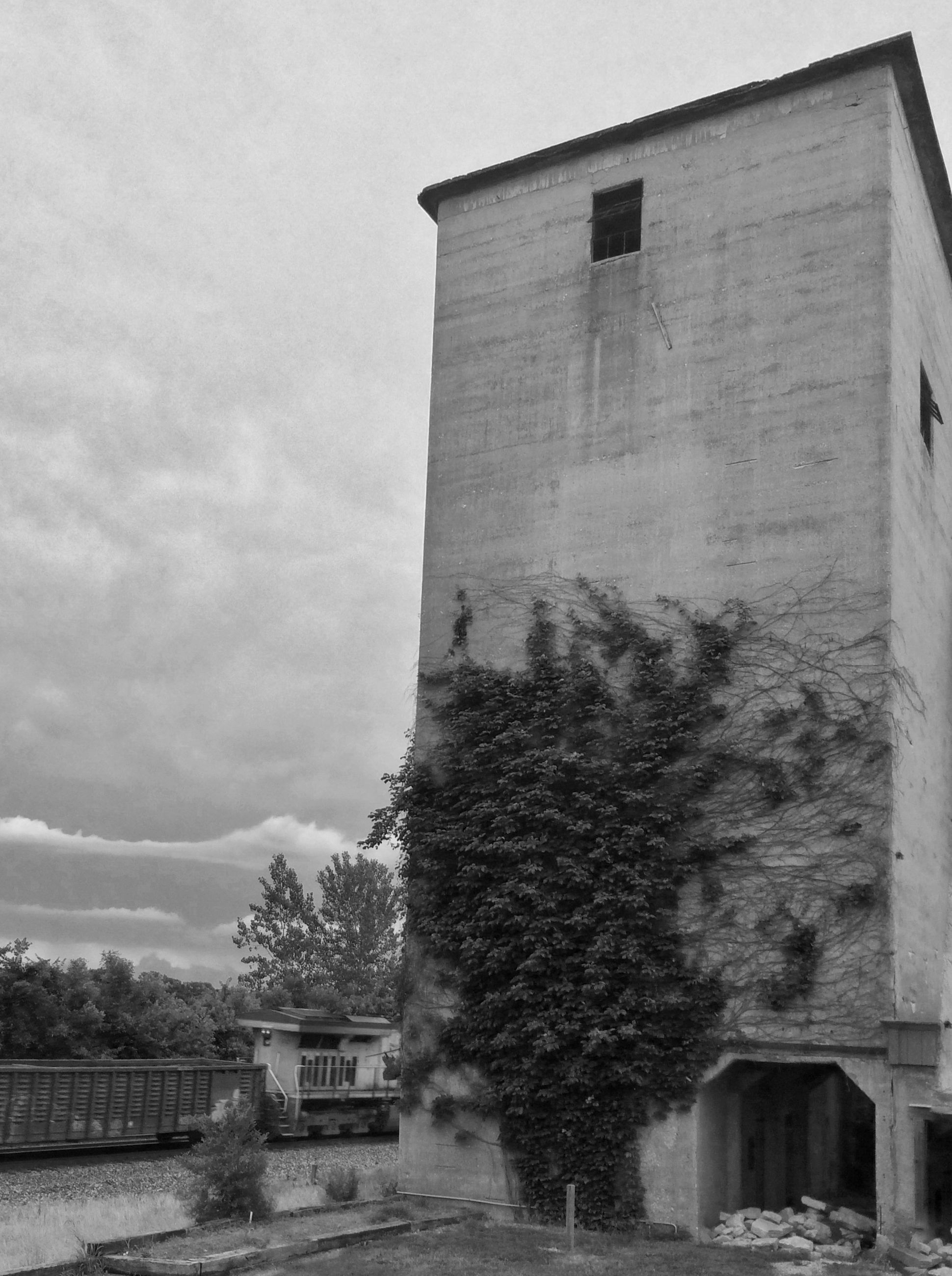architecture, built structure, building exterior, sky, house, tree, low angle view, cloud - sky, old, residential structure, window, building, exterior, day, abandoned, residential building, outdoors, cloud, no people, nature