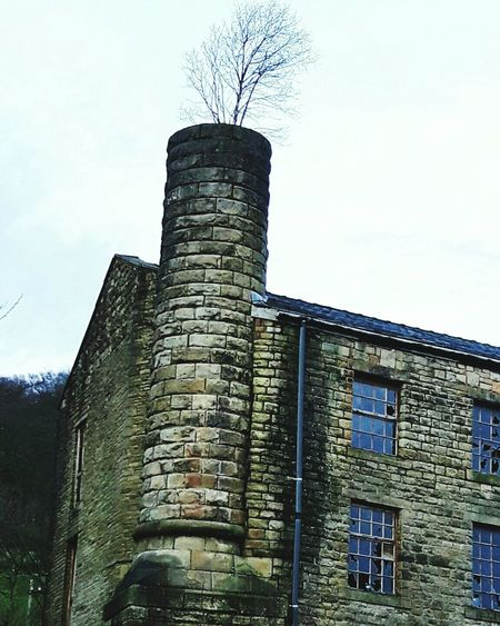 There's some strange looking smoke coming out of this chimney Chimney Mill Tree Derelict Derelict Building Yorkshire Mytholmroyd