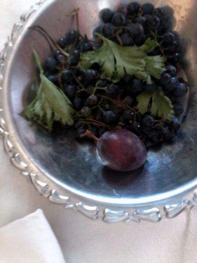 Wolfzuachis Slowfood Plum Grapes Struguri negri Pruna Fructe Fruits Fruitsalad @wolfzuachis