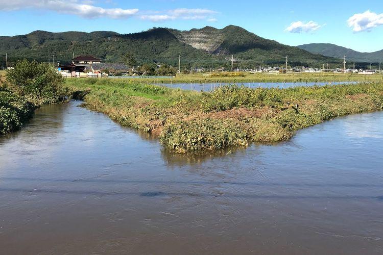 台風後の桜川