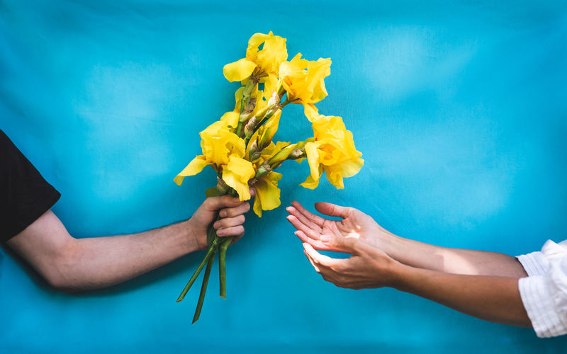 Young man giving yellow flower to woman with turquoise background