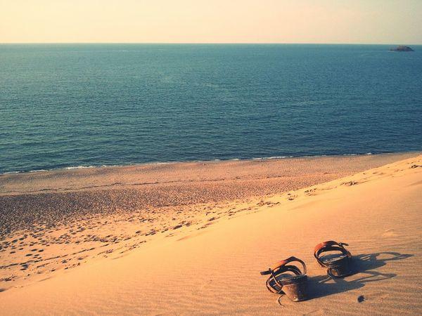 Sea Desert Trip 鳥取砂丘