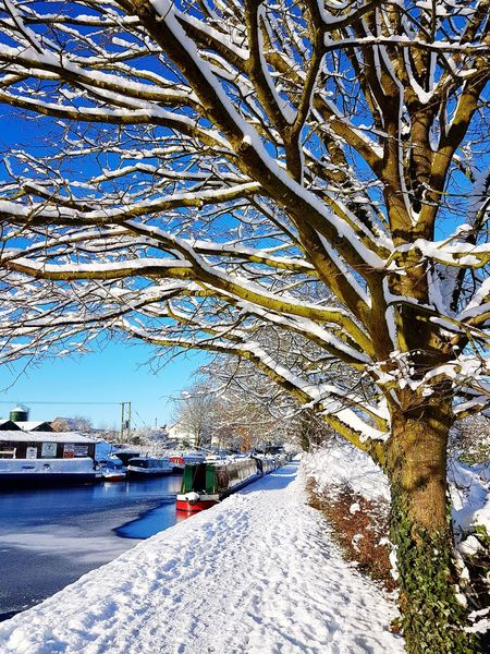 Snow Canal Canals And Waterways Blue Sky Canalboat Nature Tree Beauty In Nature Winter EyeEmNewHere Shades Of Winter