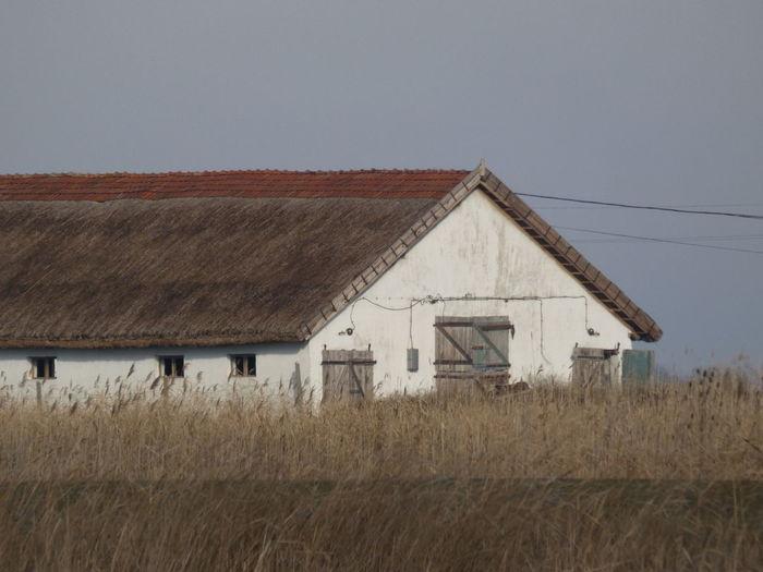 Houses on field against sky