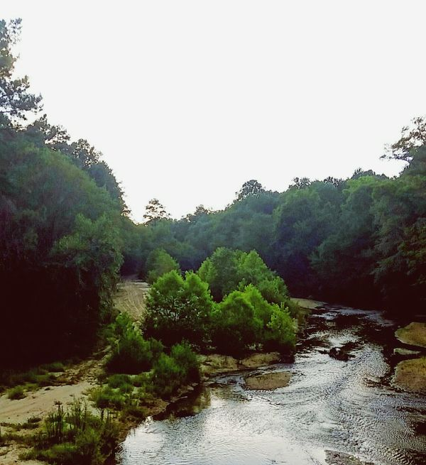 Bridge View Overlook Creek Country Life EyeEm Nature Lover Mississippi Summer Outdoors Outside Photography