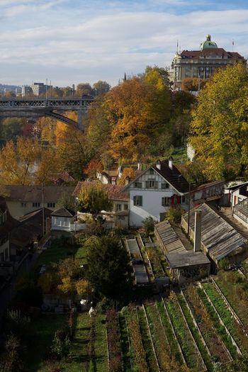 Bern. Garden