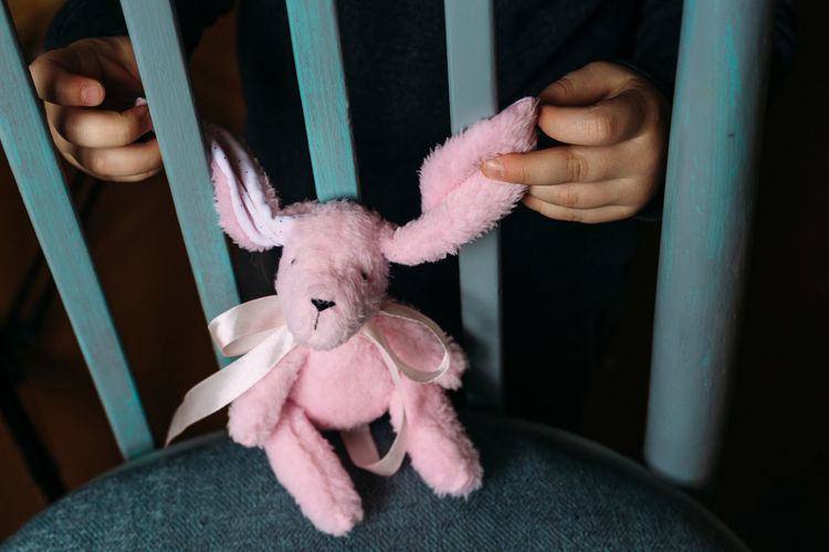 Children's hands are holding a small soft rabbit toy. social advertisement.