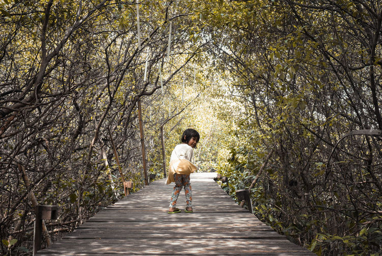 Tree One Person Full Length Plant Real People Rear View Direction The Way Forward Lifestyles Leisure Activity Walking Day Footpath Casual Clothing Nature Young Adult Adult Growth Forest Outdoors Diminishing Perspective Treelined Hairstyle