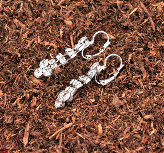 silver earrings with gems on a dry tobacco Concepts Earrings Love Tobacco Wedding Addictionelixirs Brown Cigarette  Dry Tobacco Leaves Fashion&love&beauty Female Femine Gems Gemstone  Nicotine And Caffeine Pair Precious Gem Silver
