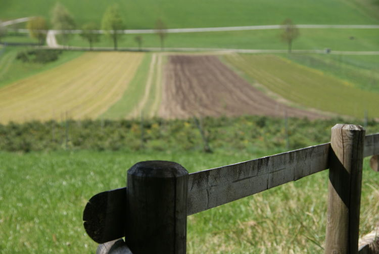 Agriculture Austria Fence Landscape