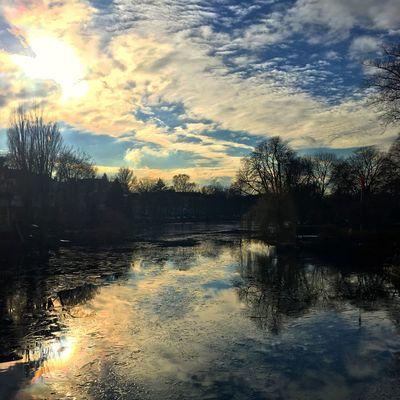 #alsterliebe #lovetheclouds #winterhude #uhlenhorst #ice #alstereis #mirror #wasserspiegelung #alster #sun #clouds #winter #itscoldoutside #hamburg #city #hh #igershamburg #welovehamburg #welovehh #hamburgmeineperle #instahamburg #typischhamburch #hamburgerecken #hamburgliebe #welivetoexplore #explore #wonderful_places #discoverhamburg Water Tree Reflection Sky Nature Outdoors Beauty In Nature Cloud - Sky Scenics Tranquil Scene Tranquility Silhouette Lake Sunset No People Day #beautifulhamburg #exploremore #nature #natgeo Adapted To The City