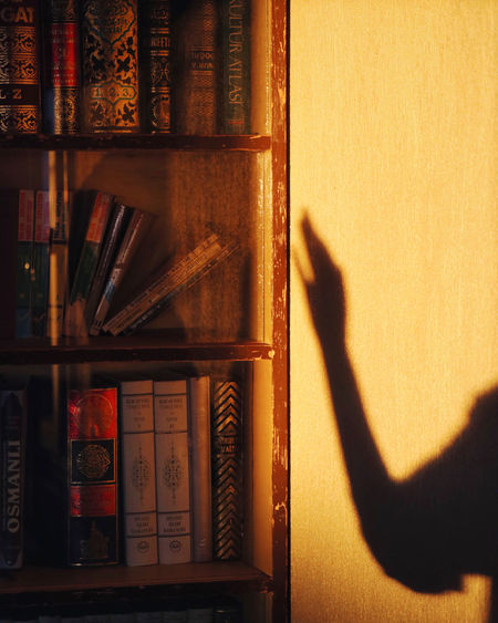 Books touch your soul