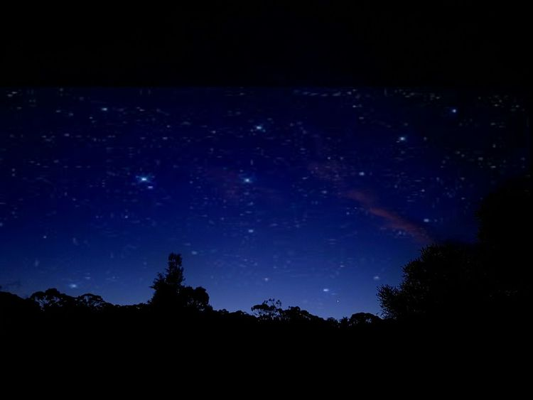 Love a country night sky. Stars Starynight Stars At Night Night Sky Forest Trees Silhouette Blue Night Country Sky