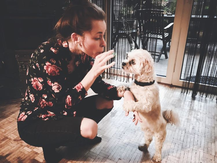 Dog Pets One Animal Domestic Animals Animal Themes Friendship Real People Love Bonding Happiness Smiling Lifestyles Young Women Young Woman Playing Young Adult Standing Standing Dog Cute Pets
