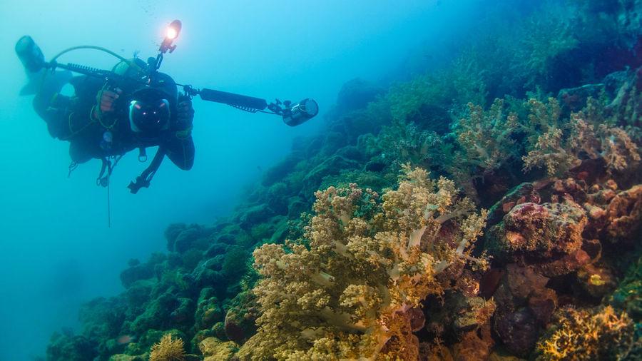 Young Man Scuba Diving