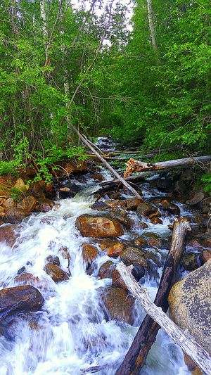 Hanging Out Check This Out Enjoying Life What A View Colorado Cottonwood Pass Denny Creek Trailhead Sunday Drive Waterfall Rocks And Water Ripples Naturesbeauty Beauty Around Me