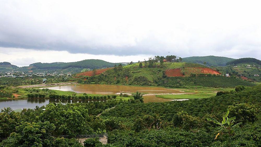 Agriculture Field No People Mountain Outdoors Rural Scene Tranquility Scenics Landscape Beauty In Nature Nature Water Day Growth Tree Irrigation Equipment Rice Paddy Freshness Sky Investing In Quality Of Life