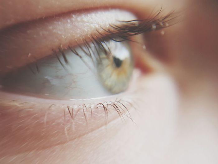 Cropped eye of child