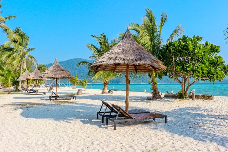 Beach Thatched