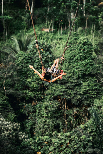 High angle view of swing hanging on rope in forest