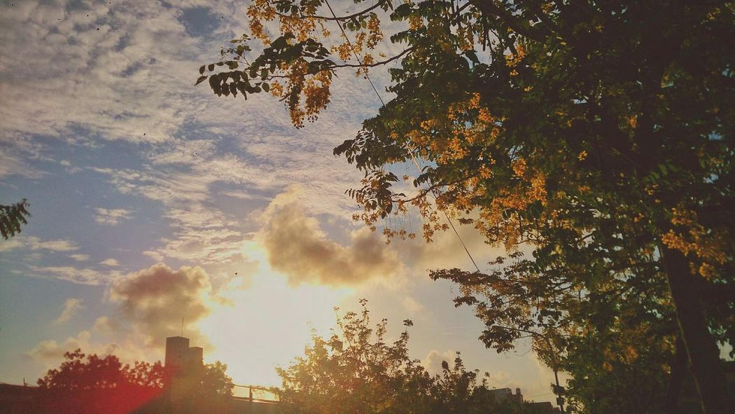 Another day... VSCO Vscocam OpenEdit 台南 台灣 Sun 1day1shot Snapseed Sunandclouds