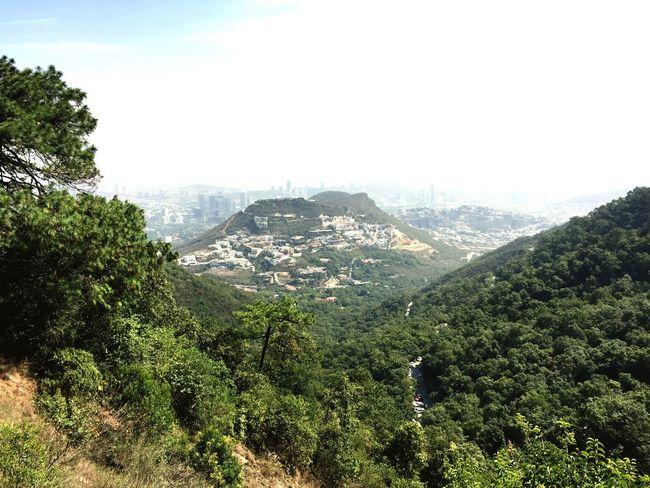 Naturaleza y arquitectura Nature Mountain Tree Forest Architecture