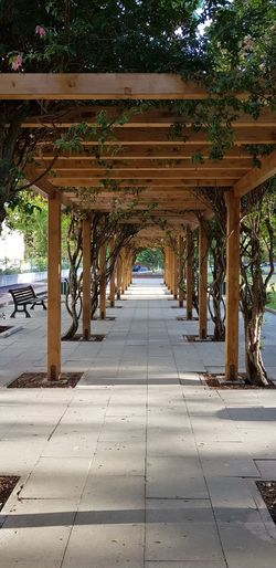 Under Tree Beach Water Shadow Architectural Column Sea Architecture Built Structure Underneath