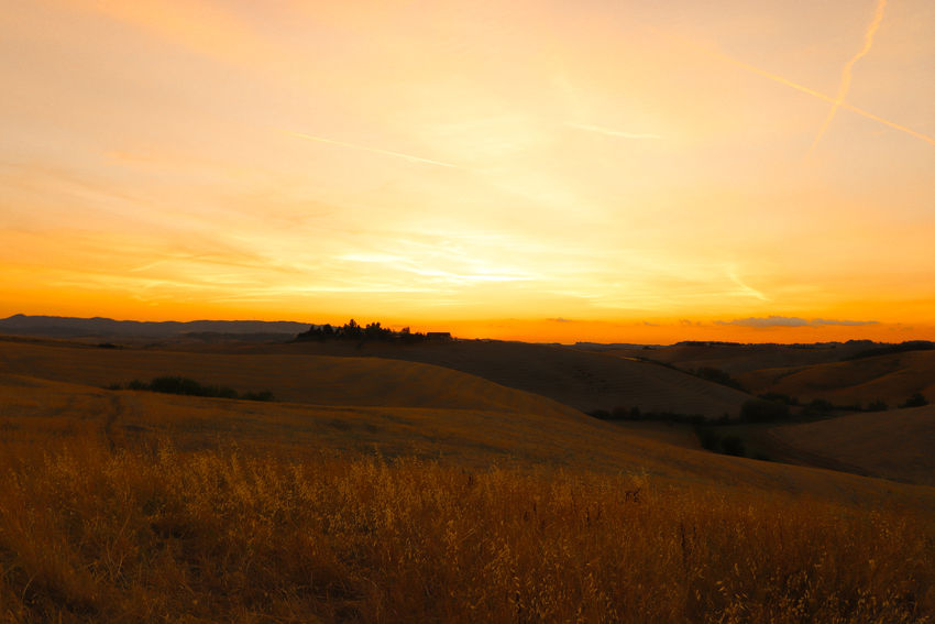 Sunset in Tuscany MR7 Tuscany Beauty In Nature Canon Eos77D Field Grass Growth Landscape Nature No People Outdoors Rural Scene Scenics Sky Sun Sunset Tranquil Scene Tranquility Yellow