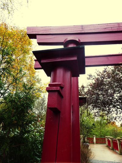 Denmark 🇩🇰🇩🇰🇩🇰 Odense City Japanese Style Japanese Wooden Gate Red Gate Wood - Material Built Structure Outdoors Building Exterior Japanese Garden Garden Architecture Garden Style No People Day Low Angle View Architecture