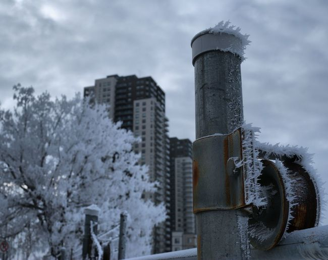Architecture Building Exterior Close-up Cold Temperature Day Frost Frozen Nature No People Outdoors Sky Snow Tree Weather Winter