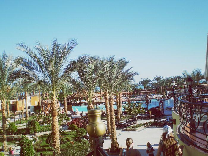 Hurgada, Egypt Amazing Holiday Amazing Hotel