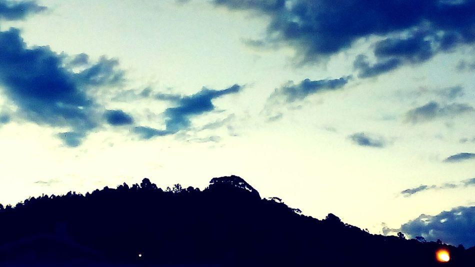blue Silhouette