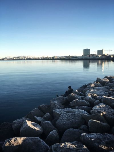 Man One Person Single Person Melancholic Landscapes Lonely Dreamy Bay Sea Stones Ice Iceland Reykjavik City Cityscape Nature Harbor Capital Cities  Water Rocks And Water Day Chill Clear Sky Blue Travel Winter